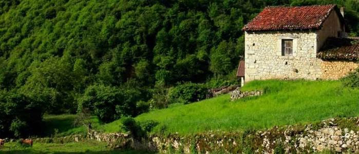 Casa rural aguas del bosque casas rurales con jacuzzi en for Casa rural con chimenea asturias